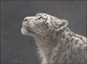 Silence Speaks - Snow Leopard, by Michael Pape