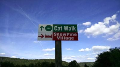 snow pine summer trial sign