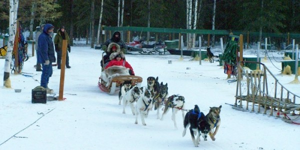 Mushing is a must in Fairbanks