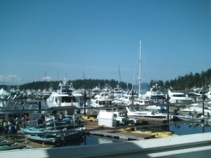 Washington State 2010 109