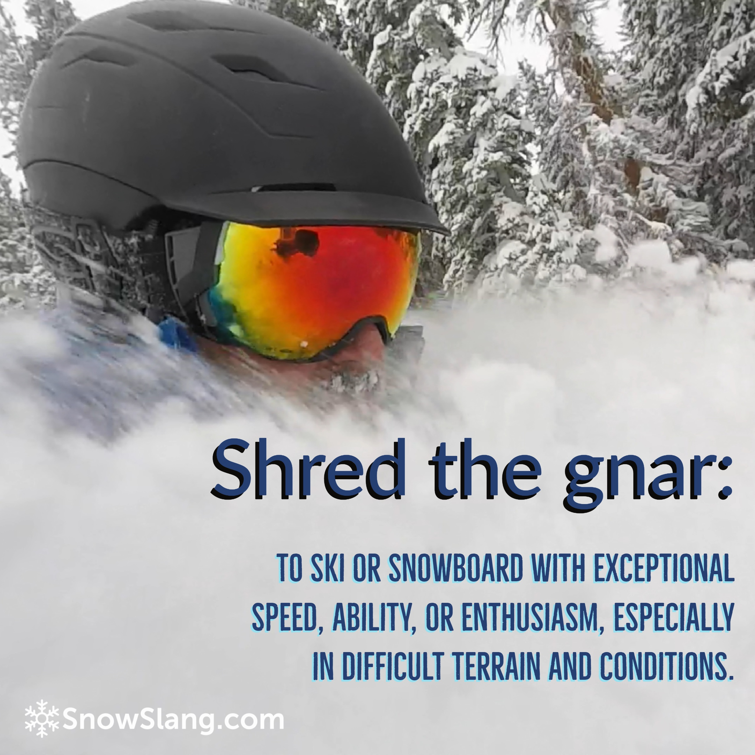 shred the gnar meaning