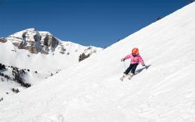 JH kid skierV1