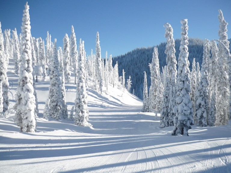 Fernie Ski Holidays