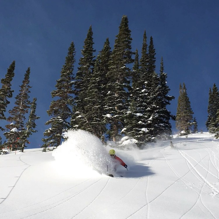 Ski Holidays to Snowbird
