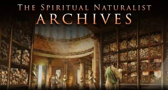 sn-archives.banner