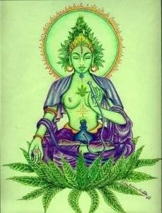 Sacred marijuana