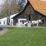 20110502104311Kelley-Farm-wedding_large1