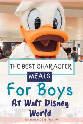 Pin with Donald Duck and the best character meals for boys at Disney world
