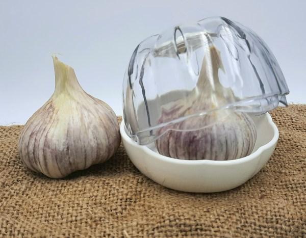 Joie garlic storage pod