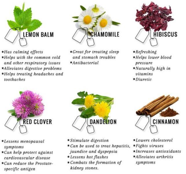 Image Result For Great Health Benefits Of Drinking Green Tea