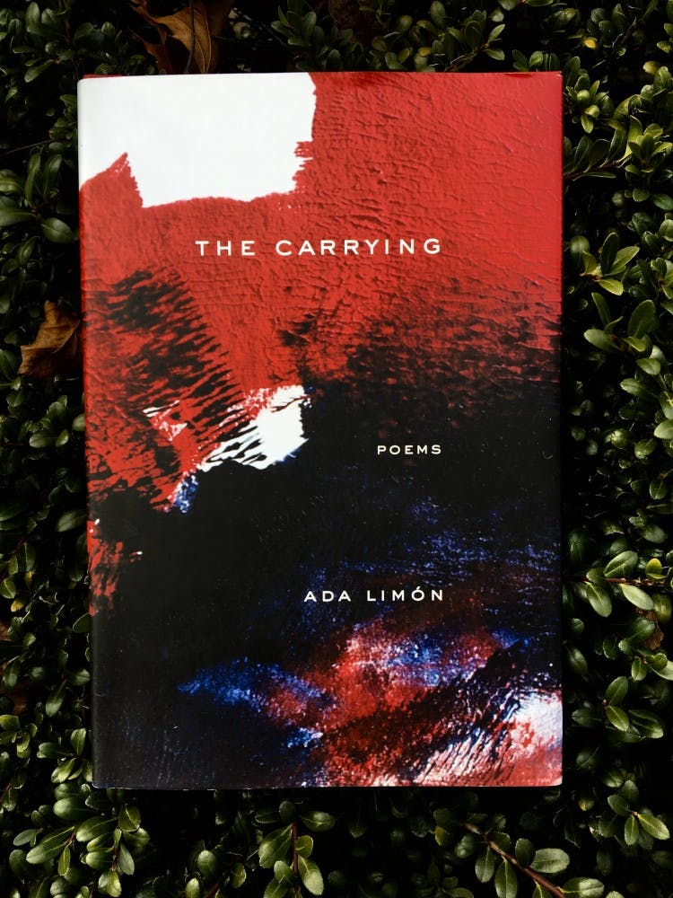 Image result for 7. The Carrying by Ada Limón