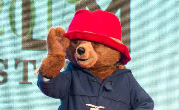 paddington bear film # 57