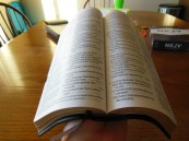 holman nkjv large print personal size reference 045