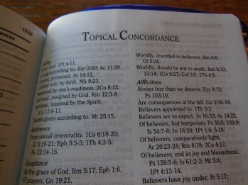 three bibles 038
