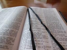 three bibles 169
