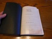 Passio MEV Bible 015