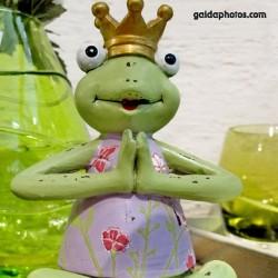 Frosch, Froschkönig, Yoga, Meditation