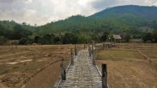 Bambusbrücke über den Reisfeldern