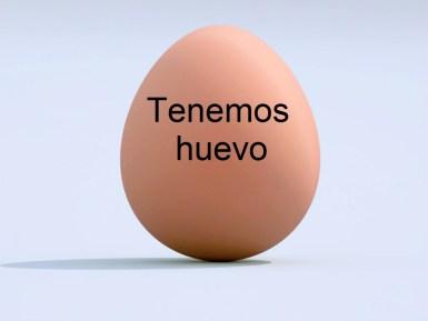 HUEVO 1