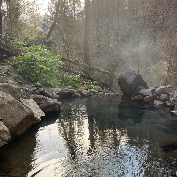 Terwilliger Hot Springs Pool