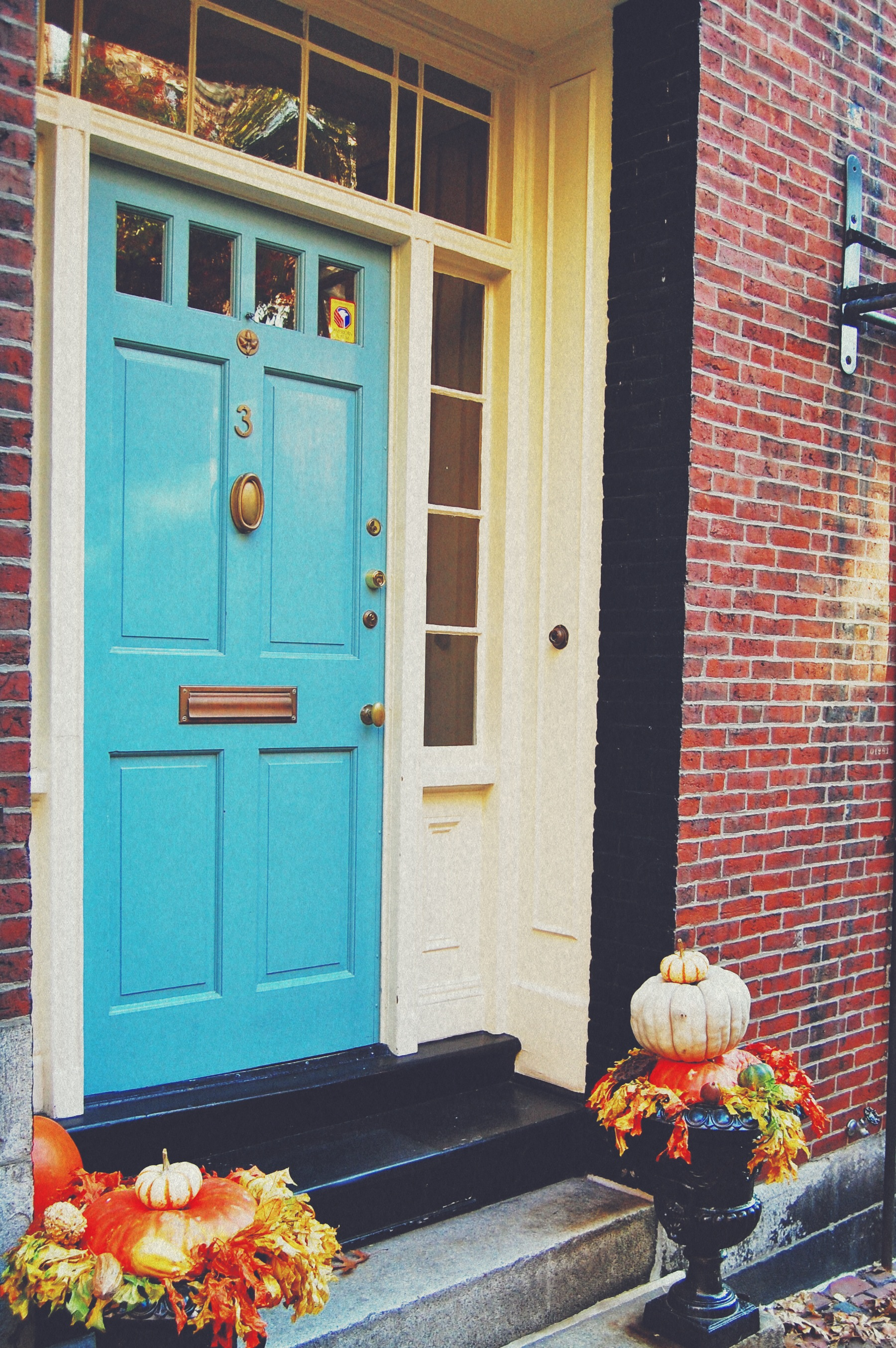 Acorn Street & Other Doors - shell chic'd