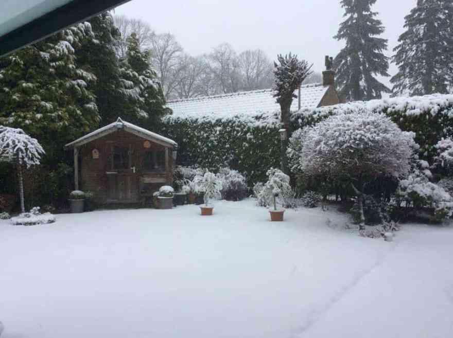 zzzzz snow