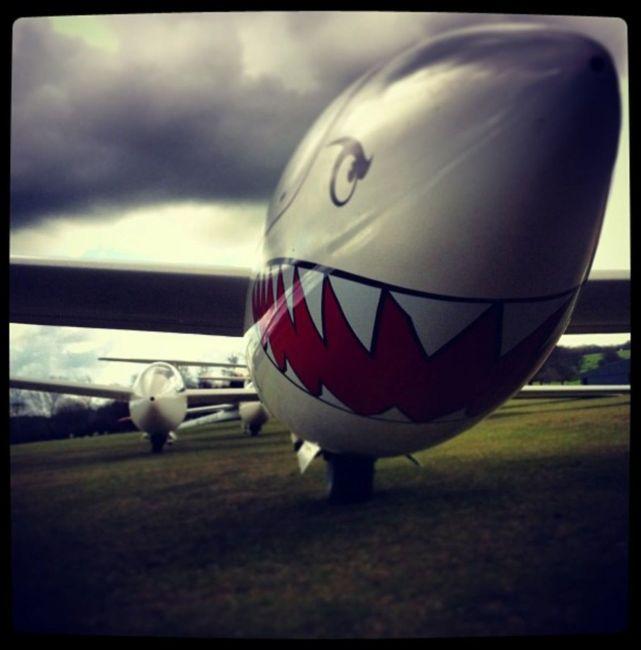 The Flying Shark
