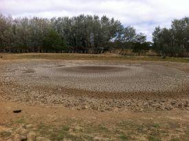 Z empty pond