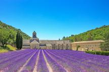 Discover Beautiful Regions Of French Provence