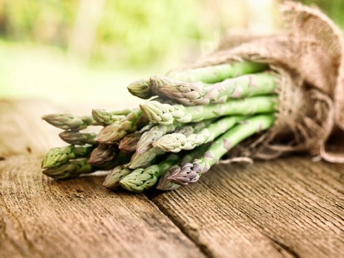 Fresh asparagus zero calorie food