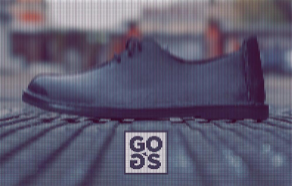 Gog`s