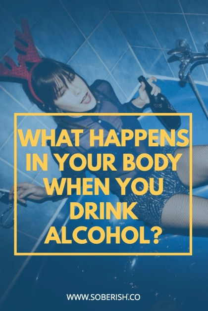 Do you know how alcohol really effects your body?