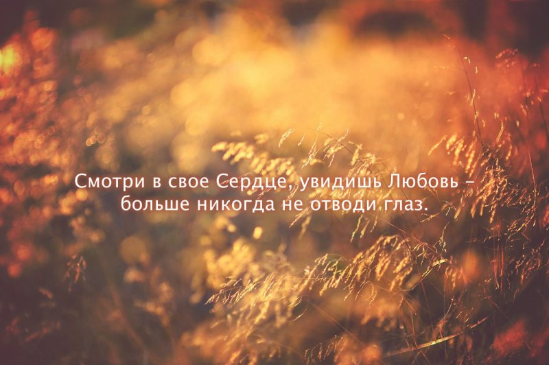 Смотри в свое Сердце, увидишь Любовь - больше никогда не отводи глаз.