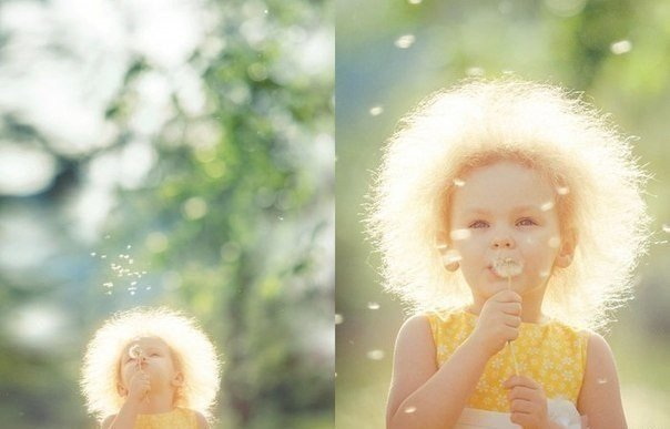 ребенок, солнышко, одуванчик