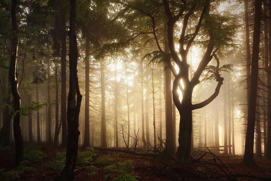 Пейзажи, вдохновившие Братьев Гримм