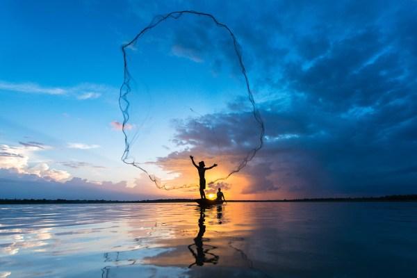 Ловить рыбу сетью