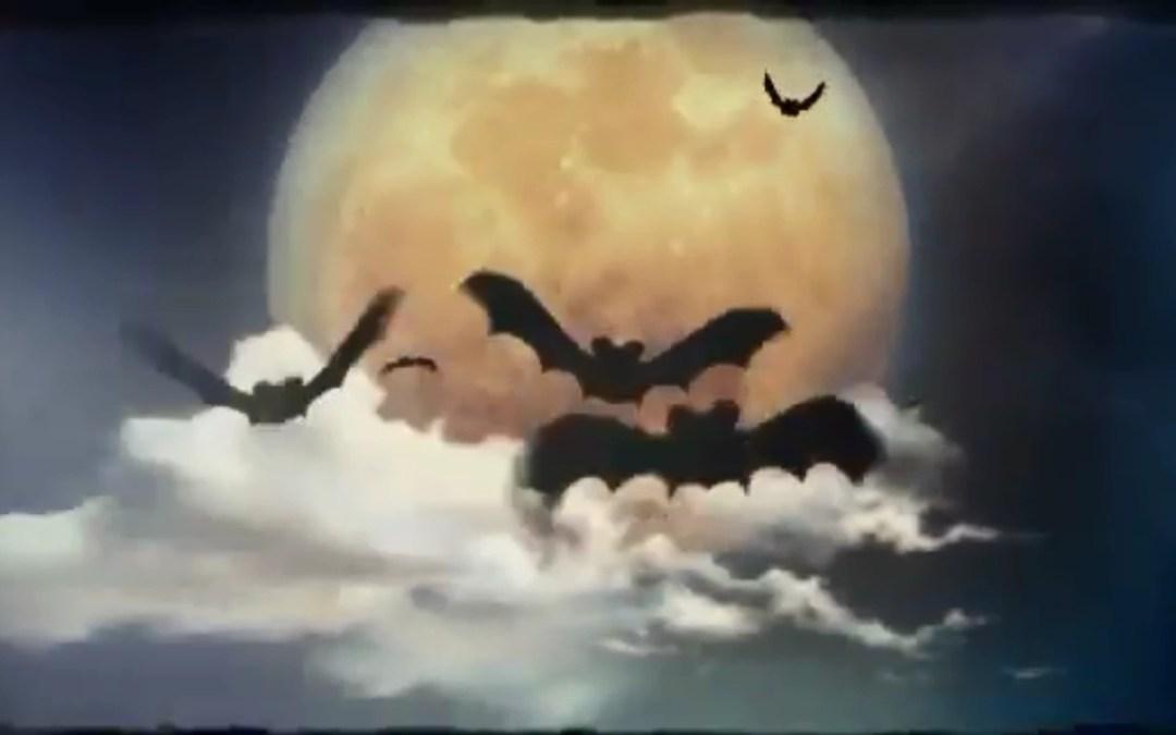 12 шагов чтобы увеличить выручку развлекательного центра празднуя Хэллоуин