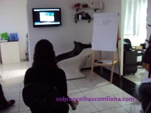 Video curso Espaço Sobrancelhas com Linha