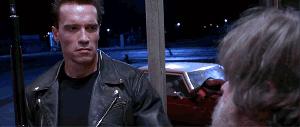 pic 2 - Terminator teacher