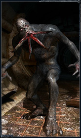 Bloodsucker  STALKER