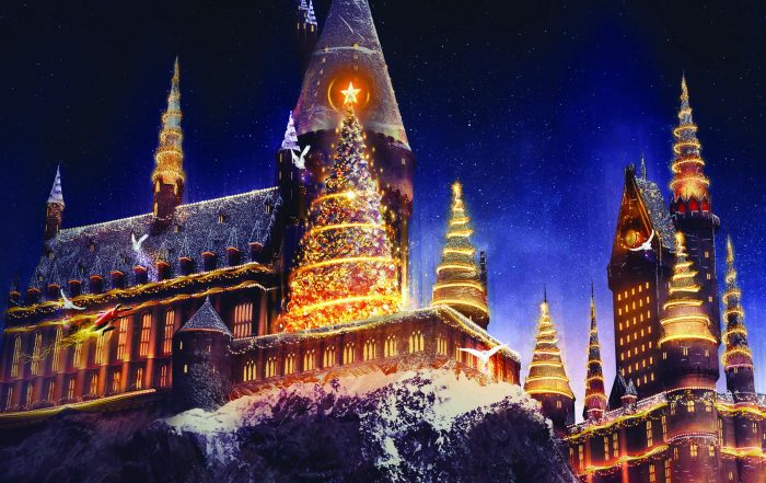 USH Holidays - Christmas in the WWoHP