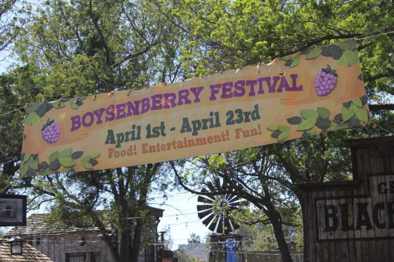 From endless boysenberry food pairings to boysenberry photo ops to a highly contentious boysenberry pie-eating contest, there is something for everyone at the Knott's Boysenberry Festival in Buena Park.