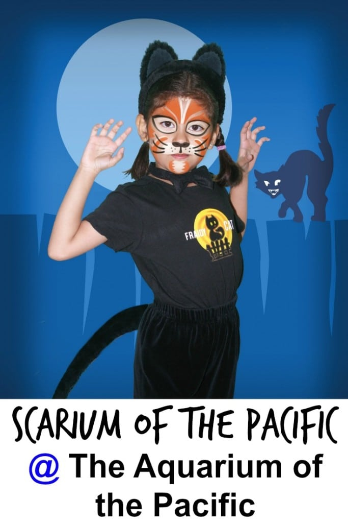 Discover creepy creatures and enjoy magic shows, costume contests, and face painting - where there's more fun than fright - at Scarium of the Pacific in Long Beach.