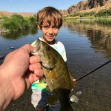 Smallmouth bass just before release back into the John Day River in Central Oregon.