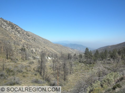 Lone Pine Canyon from the summit near Wrightwood. The San Andreas Fault runs to the left side of the canyon. A pressure ridge is visible as a light colored hill near the center of the photo above the trees.