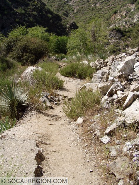 Remnants of paving in the canyon.