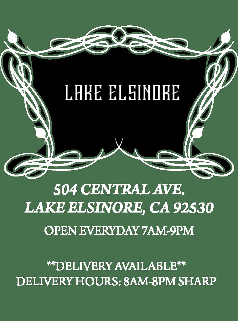 Website-LakeElsinore