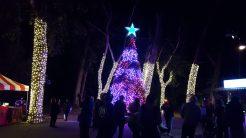 Glittering Christmas tree