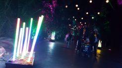 Wonderland Walkabout