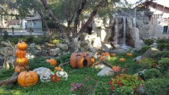 Pumpkin grotto with waterfall in the background